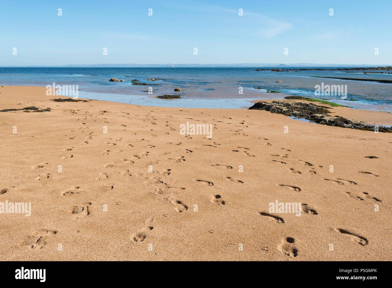 lots of footprints on a Scottish beach  - Anstruther beach, Fife, Scotland, UK - Stock Image