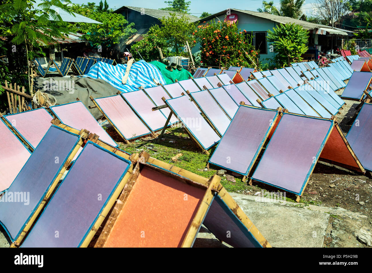 Screens with drying mulberry (saa) paper, near Chiang Mai, Thailand - Stock Image