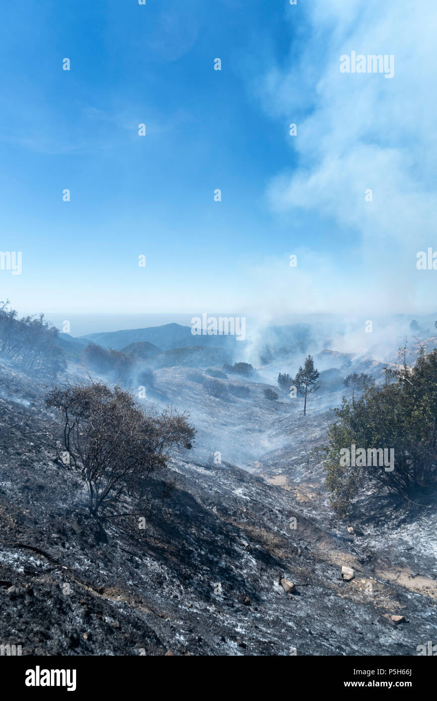 ANGELES NATIONAL FOREST, CA – MARCH 29: A controlled burn in Angeles National Forest, California on March 29, 2018. Stock Photo