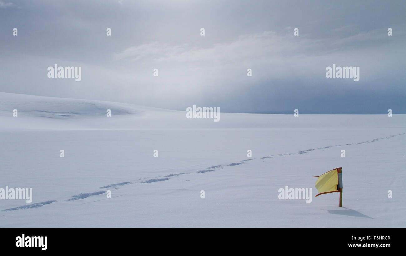 Footprints in snow, Antarctica - Stock Image