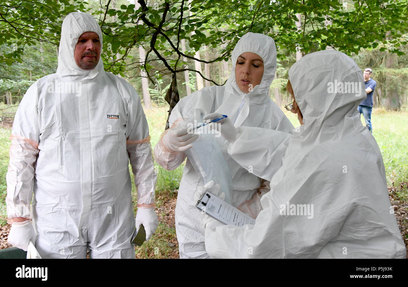 Wahlstedt, Germany. 26th June, 2018. Vets of a salvage team wearing protective suits waiting for their deployment. Responsible authorities and organizations practice the course of action during an outbreak of the African Swine Fever (ASP). Credit: Carsten Rehder/dpa/Alamy Live News - Stock Image