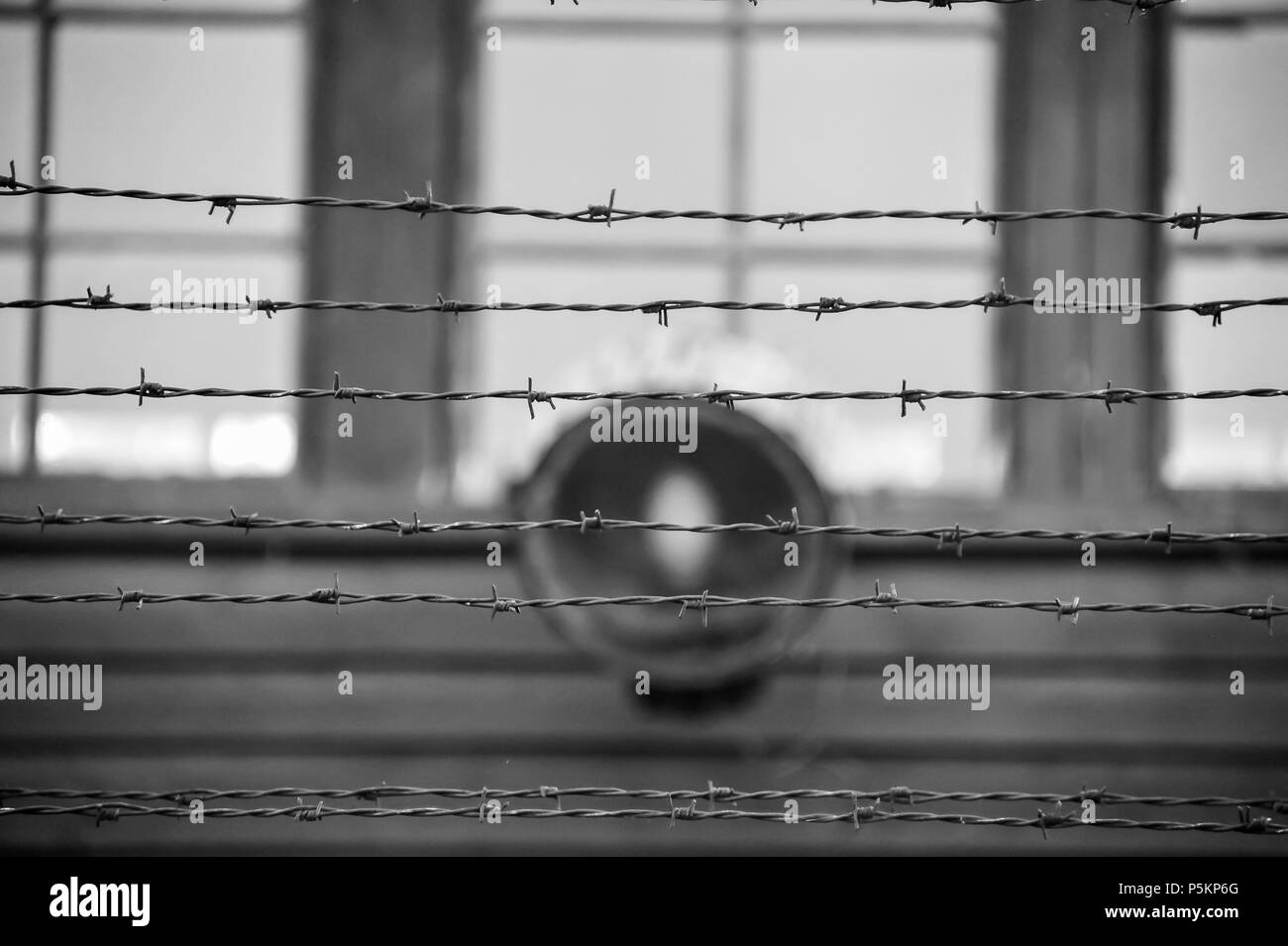 Close up barbed wire against blurred background with spotlight and windows on a building. Black & white image - Auschwitz concentration camp - Stock Image