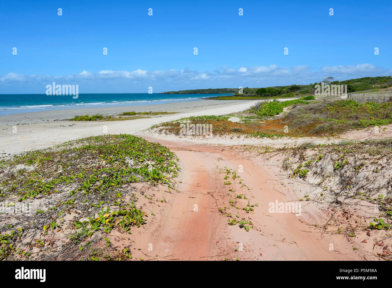 Driving 4wd Track Cape York High Resolution Stock Photography and Images -  Alamy