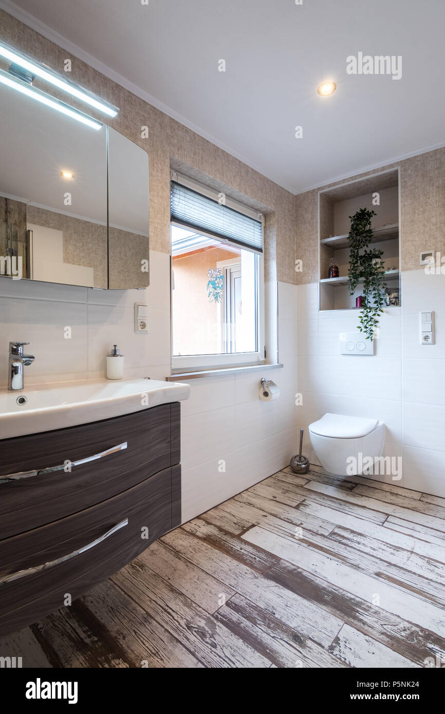 Modern Bathroom In Vintage Style With Toilet And Vintage Floor Tiles