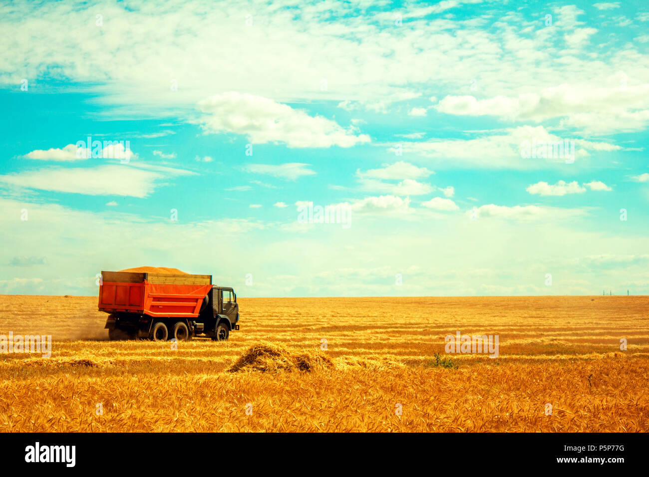 truck on field - Stock Image