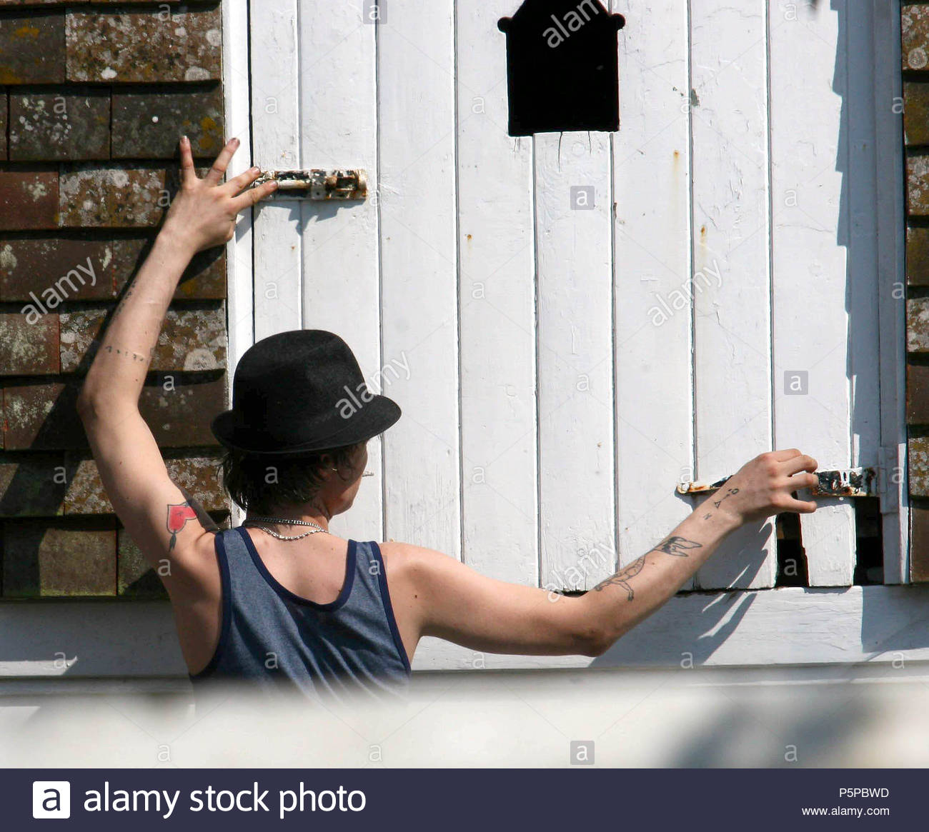 Babyshambles lead singer Pete Doherty fixing a door on his garage at his home in Durley Marlbourgh. Pete who had been serving a prison sentence at Wormwood ... & Babyshambles lead singer Pete Doherty fixing a door on his garage at ...