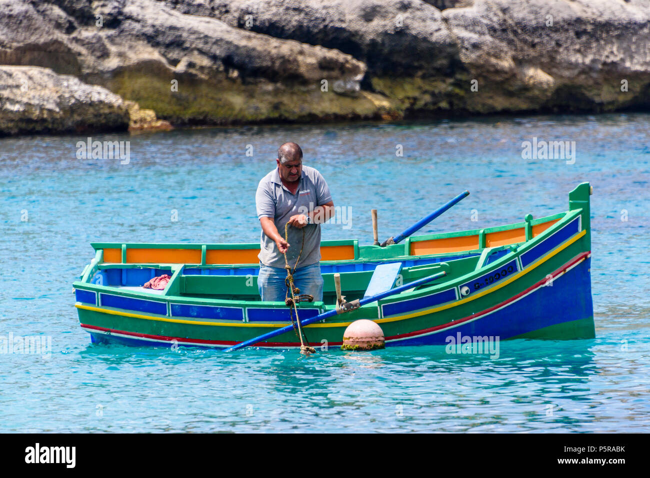 A fisherman rows his traditional Maltese rowing boat out in Xlendi bay to collect lobster cages. - Stock Image