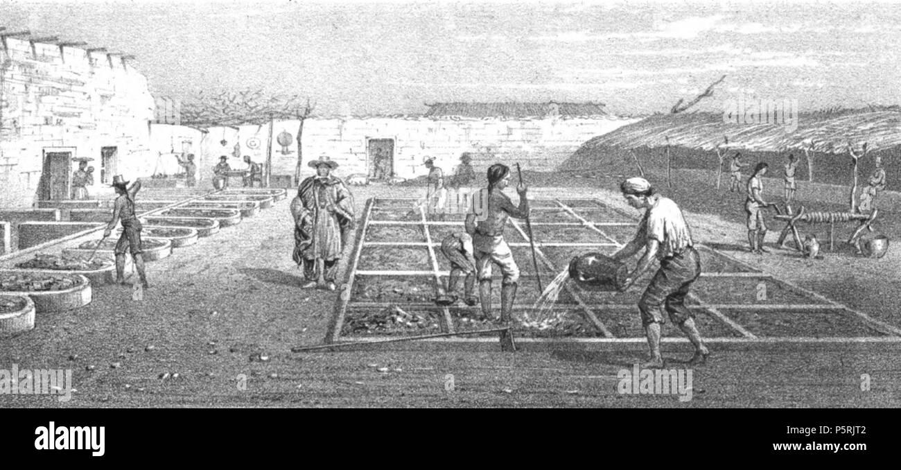 Buitrón de Don José M. Riveros, Tirana (Provincia de Tarapacá)  circa 1828. N/A 248 Buitron de Riveros 1828 - Stock Image