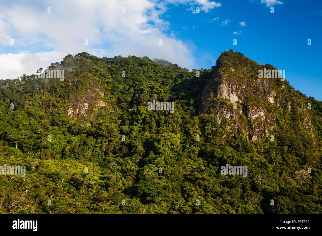 Early morning light in Altos de Campana national park, Cordillera Central, Republic of Panama. Cerro la Cruz is to the right. Stock Photo