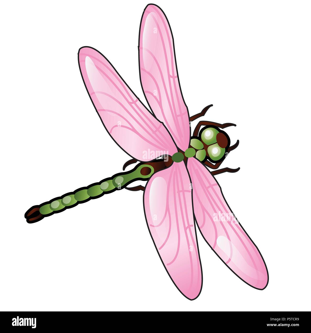 Cartoon dragonfly with pink wings isolated on white background. Vector illustration. - Stock Vector