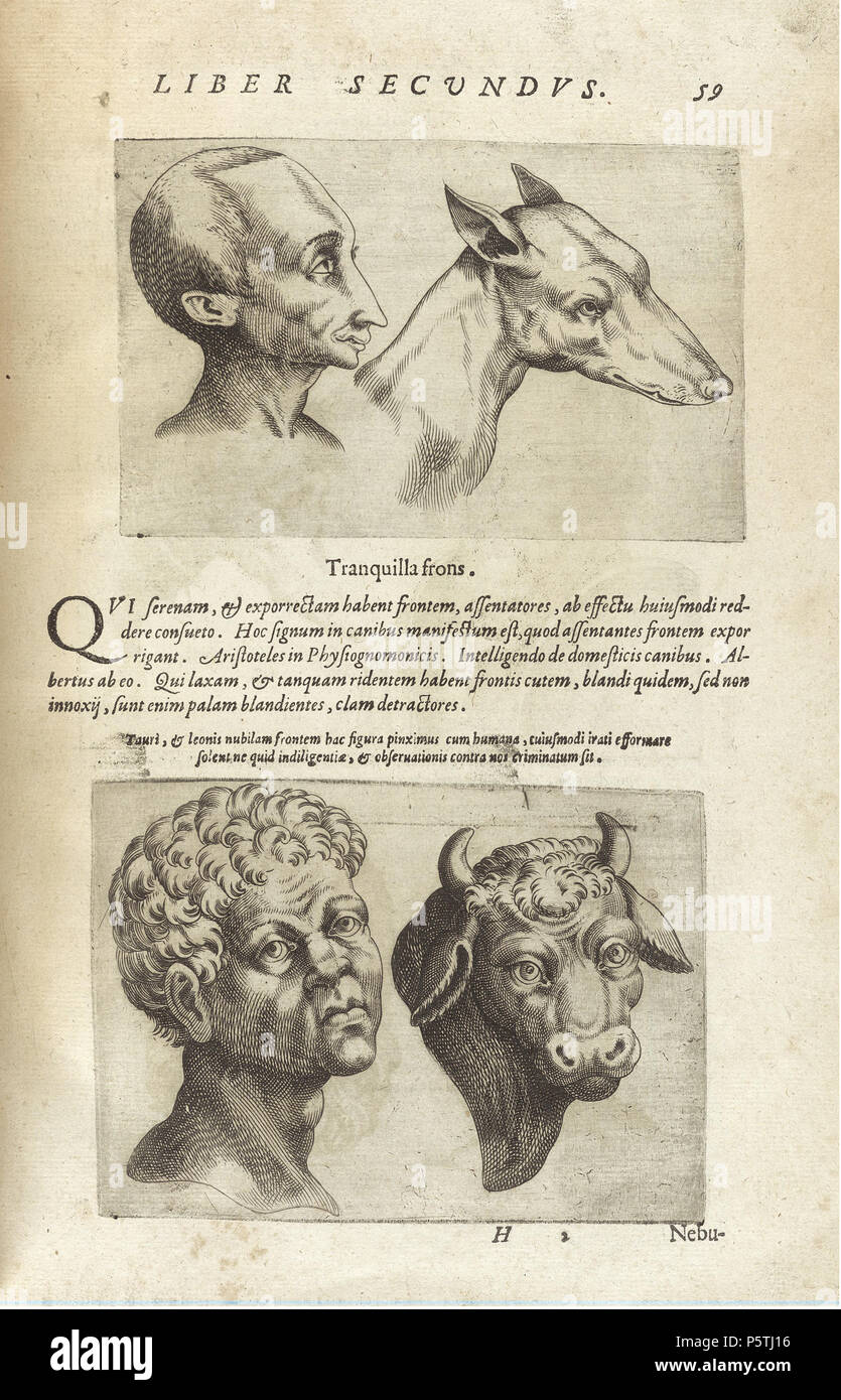 N/A. English: De humana physiognomonia libri IIII (1586) by Giambattista  della Porta, page 59. 1586. Unknown 421 De humana physiognomonia libri IIII  - NLM ...