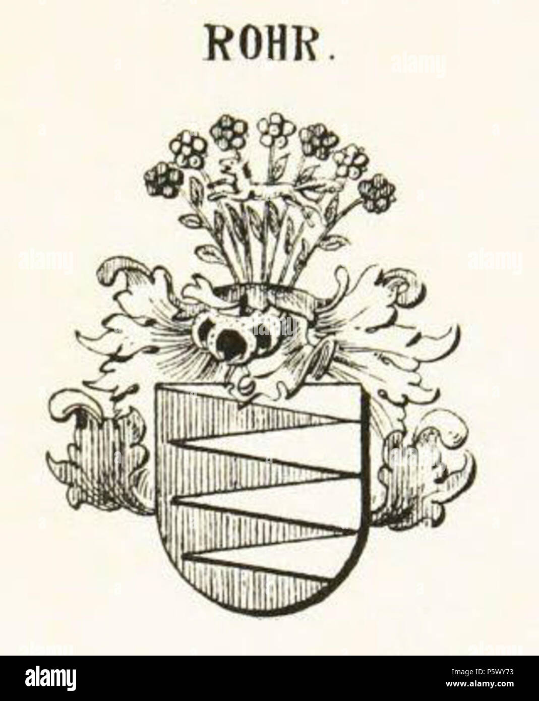 N/A  English: Coat of Arms, Rohr Family, Saxony   1907