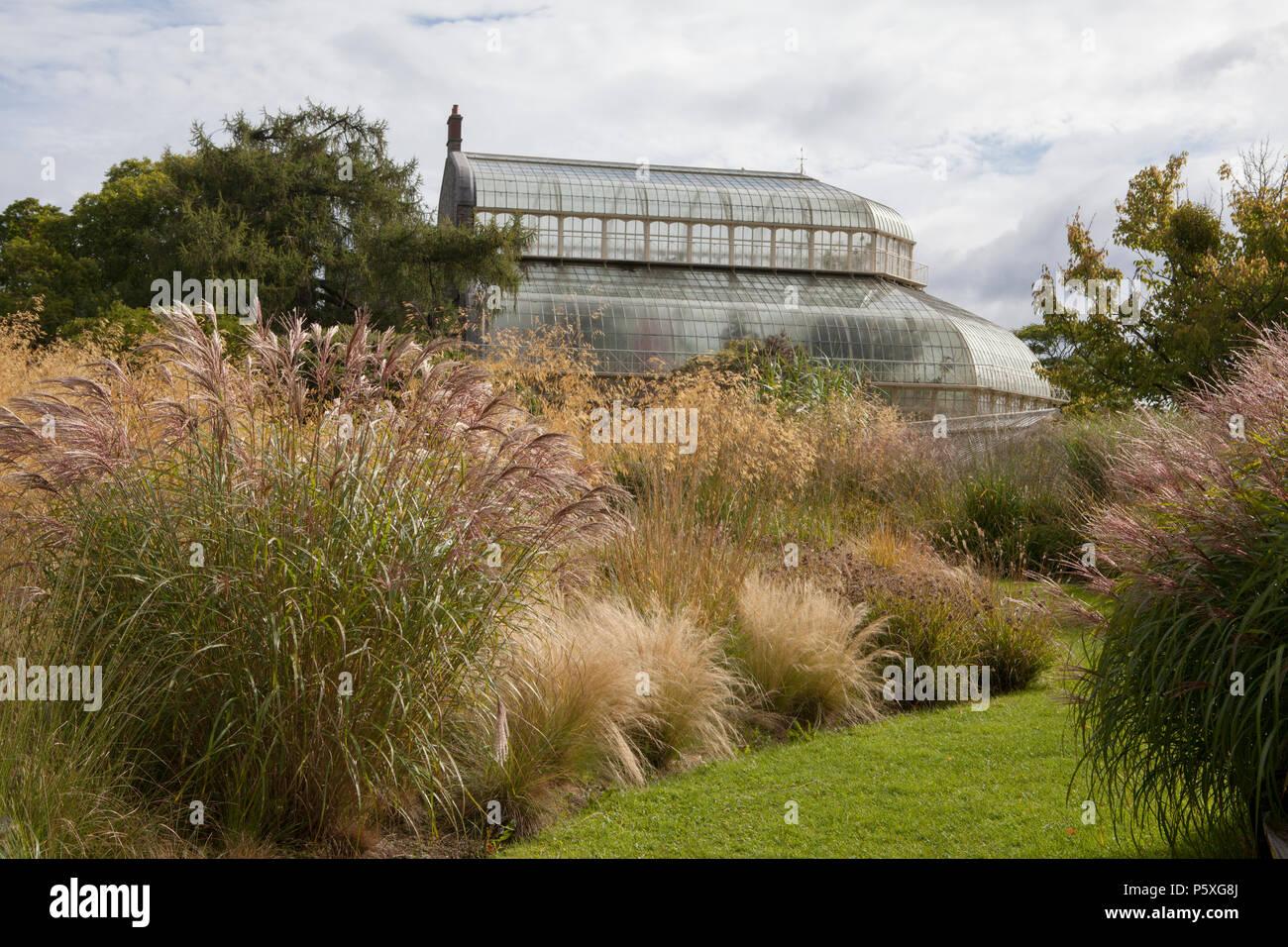 National Botanic Gardens Of Ireland Stock Photos & National Botanic ...