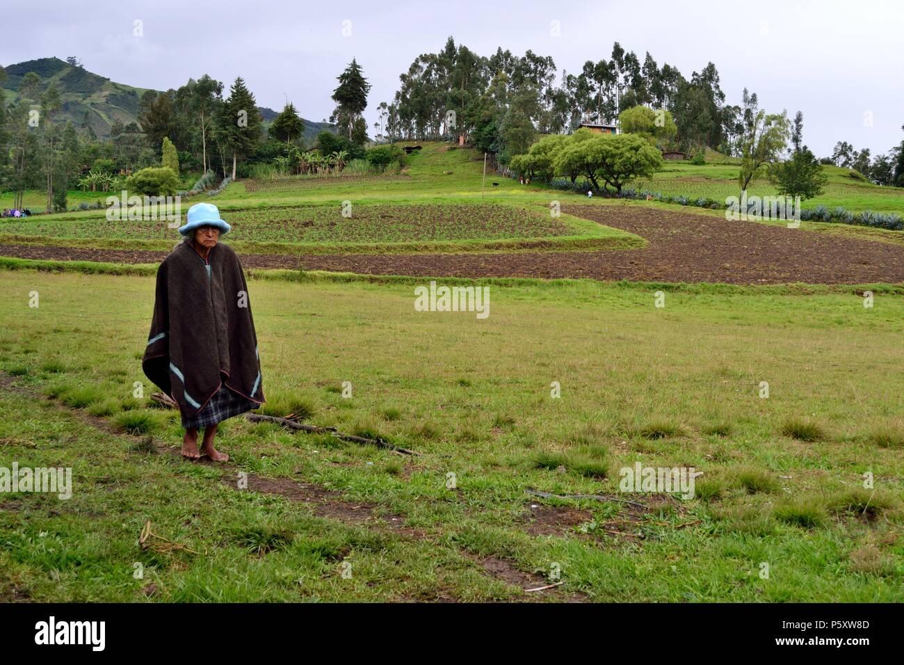 Farmer in SAPALACHE ' Las Huaringas '  - HUANCABAMBA.. Department  of Piura .PERU                      - Stock Image
