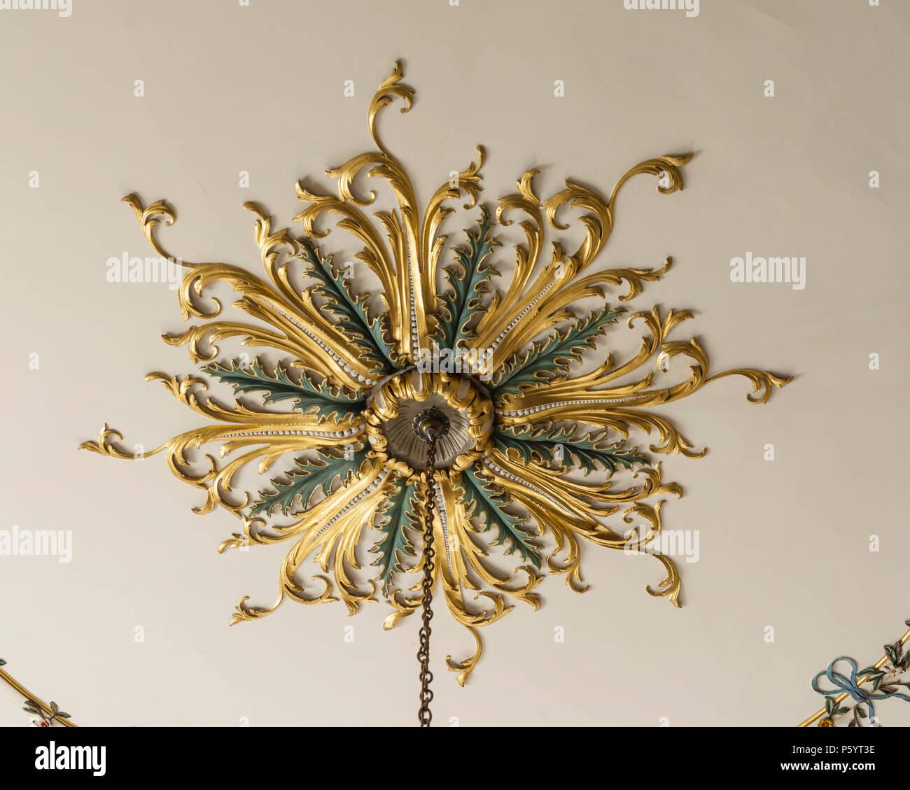 ornate-ceiling-rose-P5YT3E.jpg