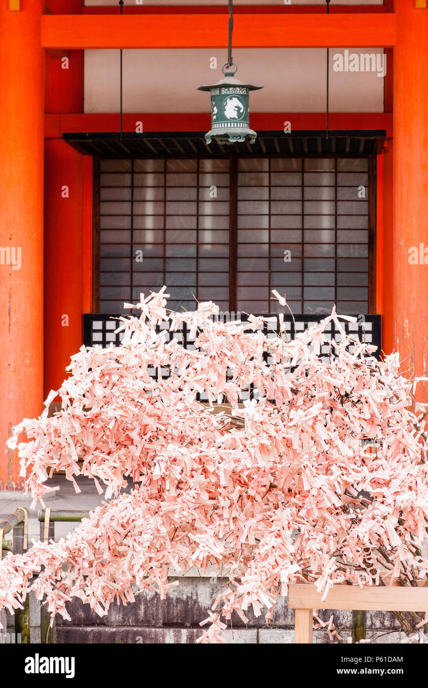 Small tree, shrub, covered in thousands of pink omikuji fortune bad luck fortune papers, in front of two pillars of building at Heian shrine, Kyoto. Stock Photo