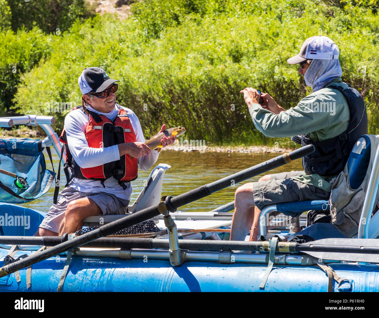 Fly fisherman holding trout in inflatable boat; Arkansas River; which runs runs through the downtown historic district of the small mountain town of S Stock Photo