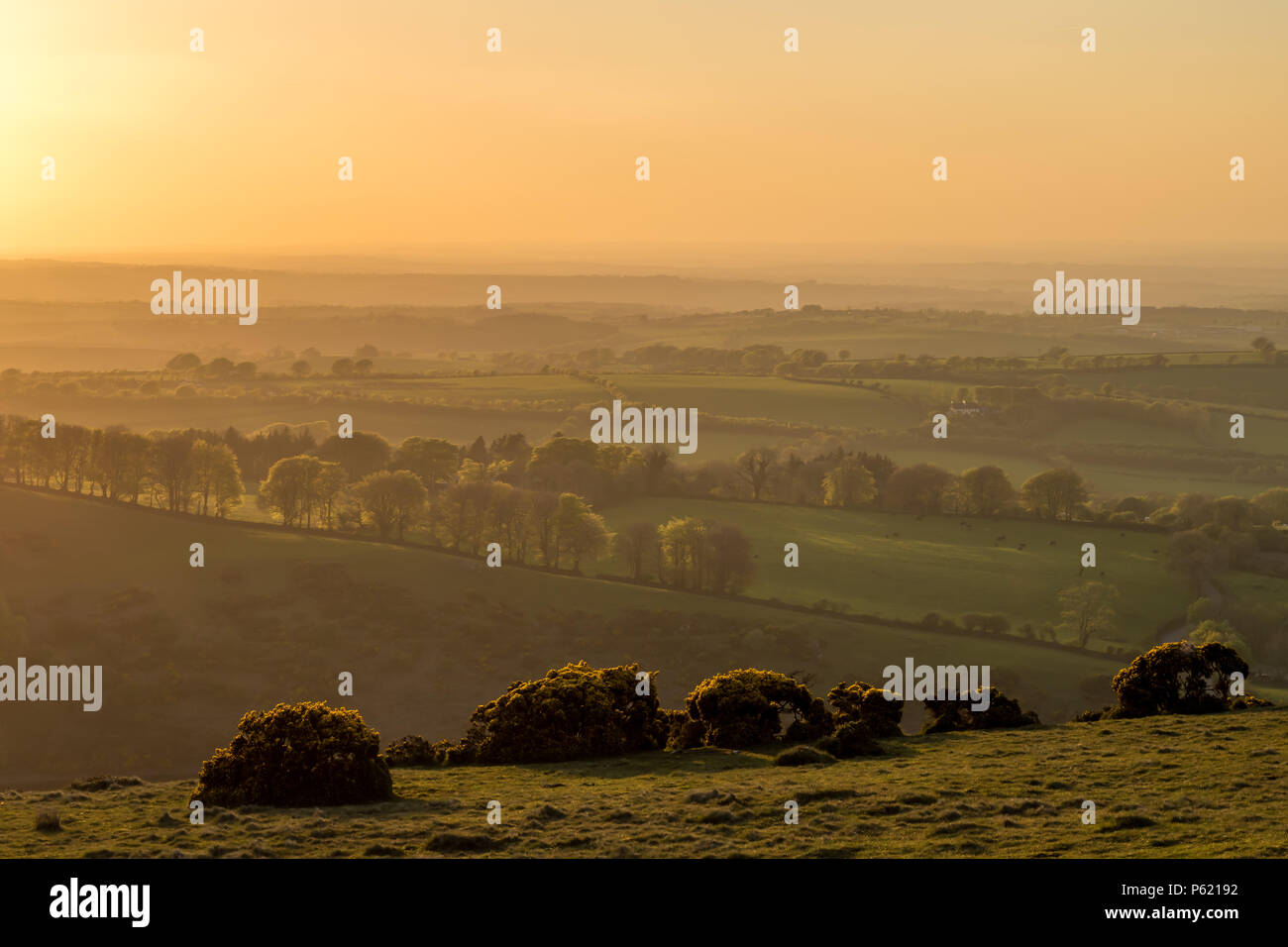 Diffused golden light across beautiful countryside - Stock Image