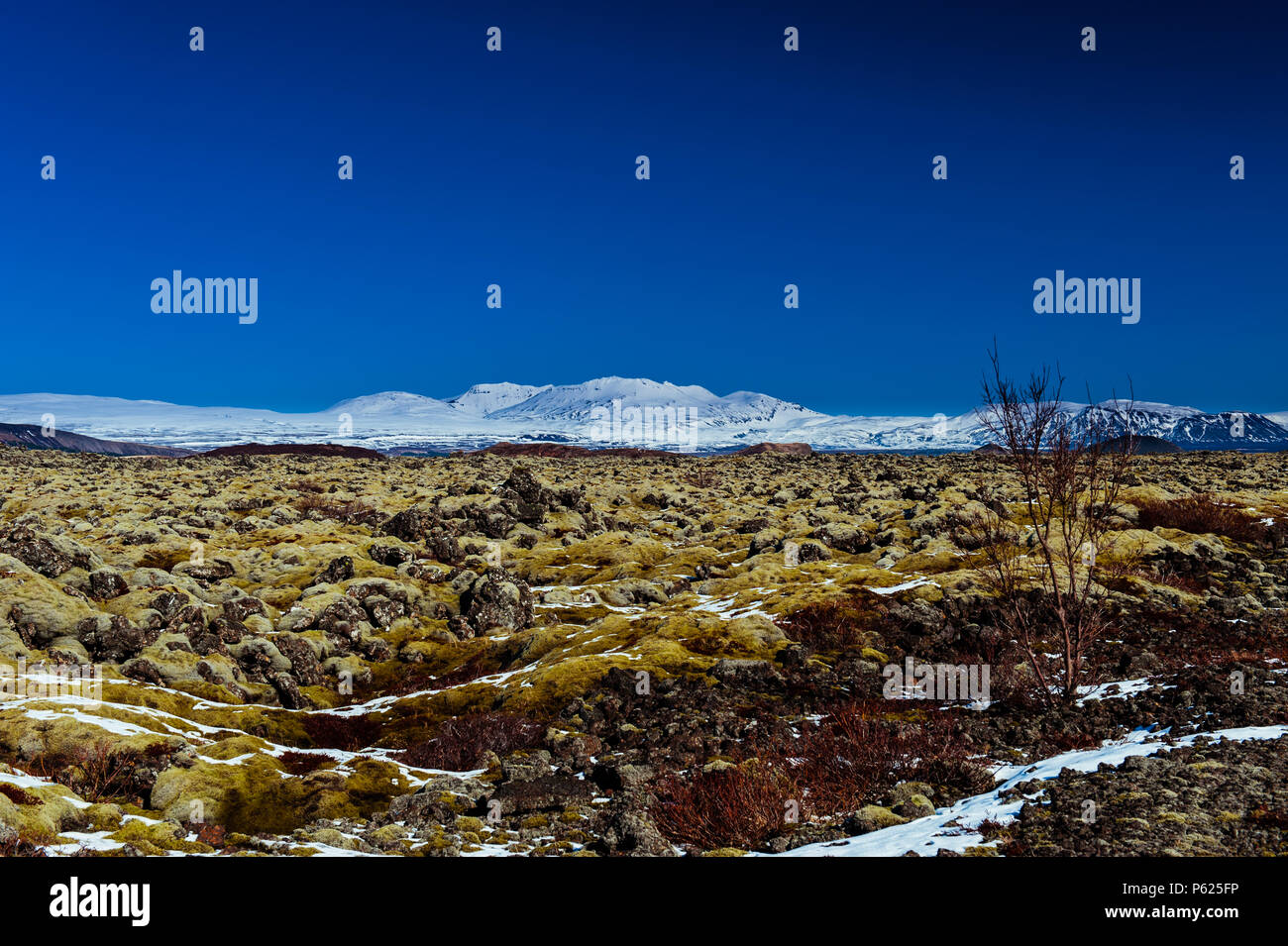 impression of icelands desoltae landscape in thingvellir national park around thingvallavatn lake coevred in contrasty vivid colours, april 2018 - Stock Image