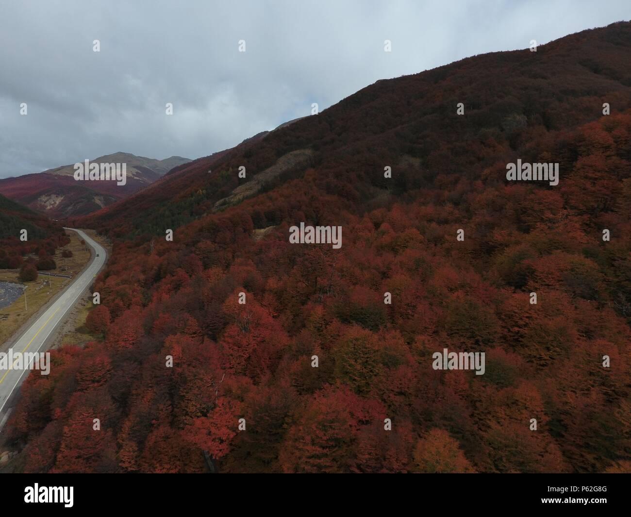 Landscapes of carretera Austral in Patagonia, Chile. Otoño en Portezuelo Ibañez - Stock Image