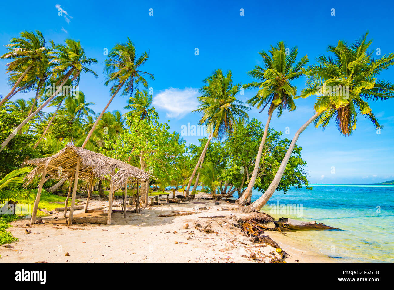 Palm trees and staw hut on tropical island. Tahaa, French Polynesia. Stock Photo