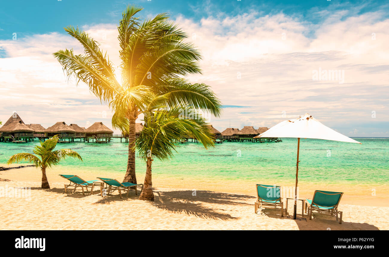 Tropical beach with beach chairs, umbrella and palm tree on a beautiful day. Travel, tourism and summer vacation concept. - Stock Image