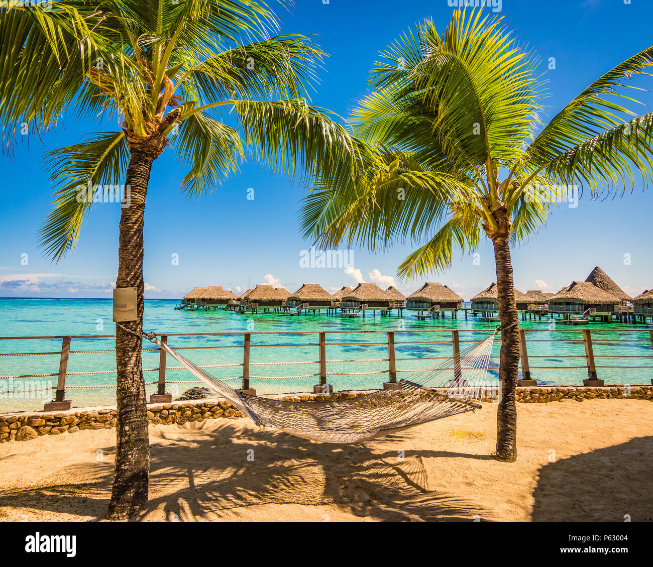 Hammock between palm trees on the beach. Summer vacation concept. - Stock Image