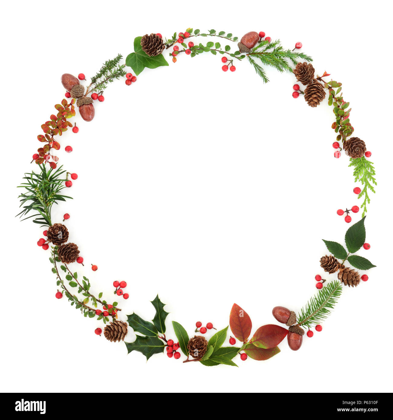 Natural Winter And Christmas Wreath Garland With Leaf Sprigs Holly