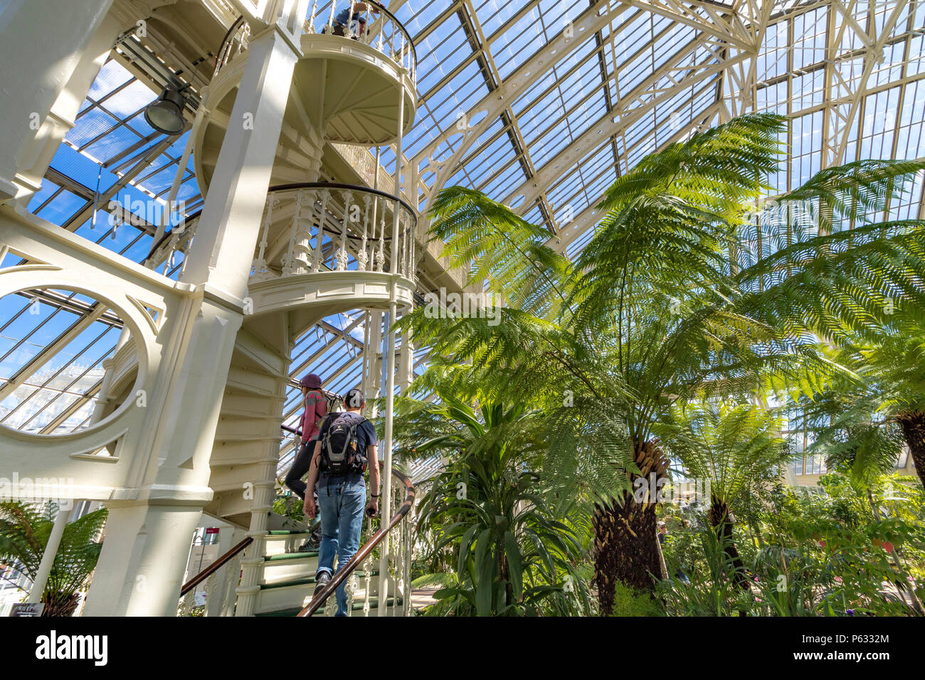 People visiting Kew Gardens in the newly restored Temperate House   which has now reopened to visitors after a 5 year restoration project in May 2018 - Stock Image