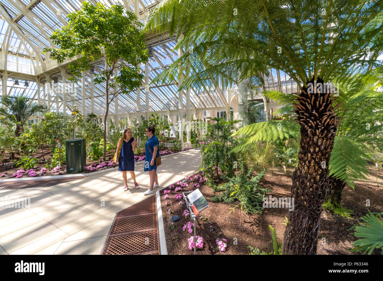 Two ladies stand talking at Kew in the newly restored Temperate House at Kew Gardens ,now reopened to visitors after a 5 year restoration project. - Stock Image
