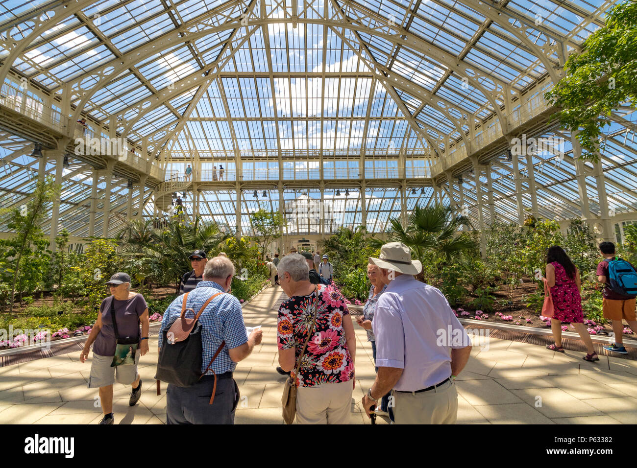 After a 5 year restoration, the newly restored Temperate House at The Royal Botanic Gardens, Kew in London has reopened to visitors . Stock Photo