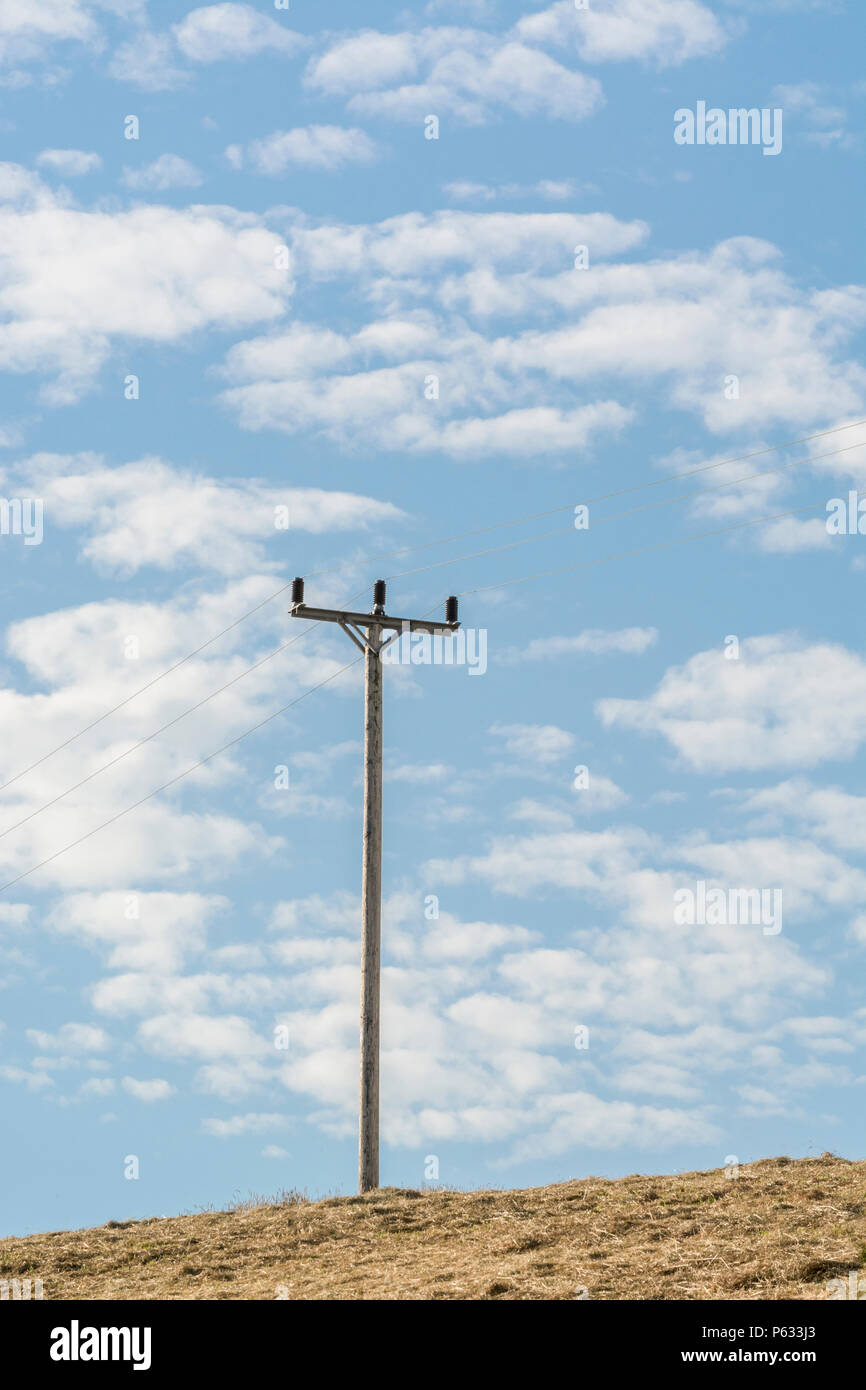 Electricity distribution pole in a summertime hay field, with blue sky and fluffy clouds. - Stock Image