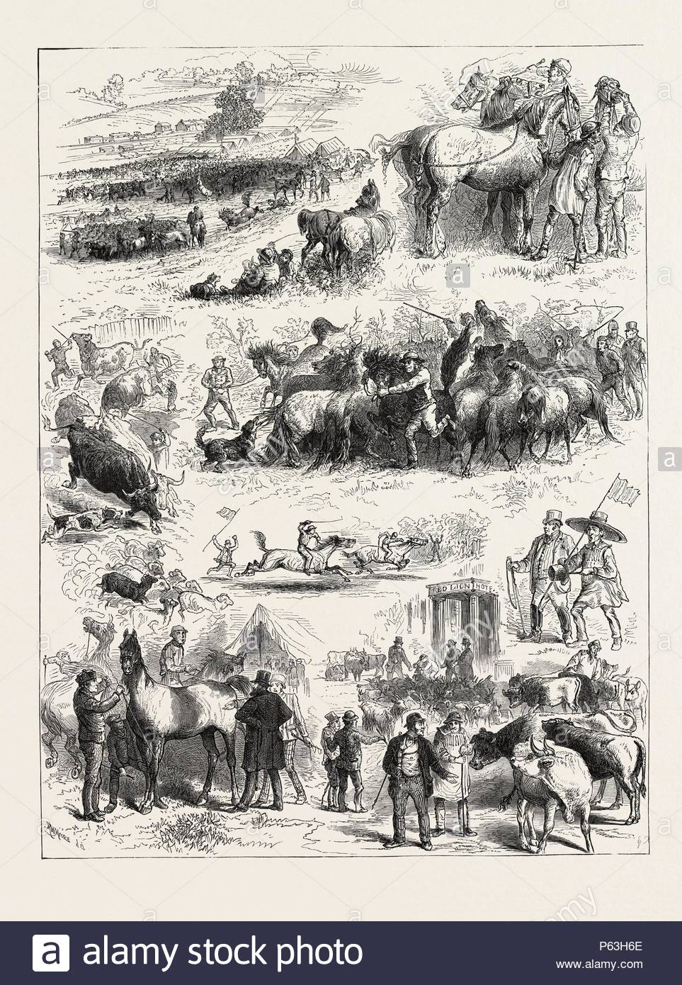 BIPEDS AND QUADRUPEDS AT BARNET FAIR, UK, 1873 engraving. - Stock Image