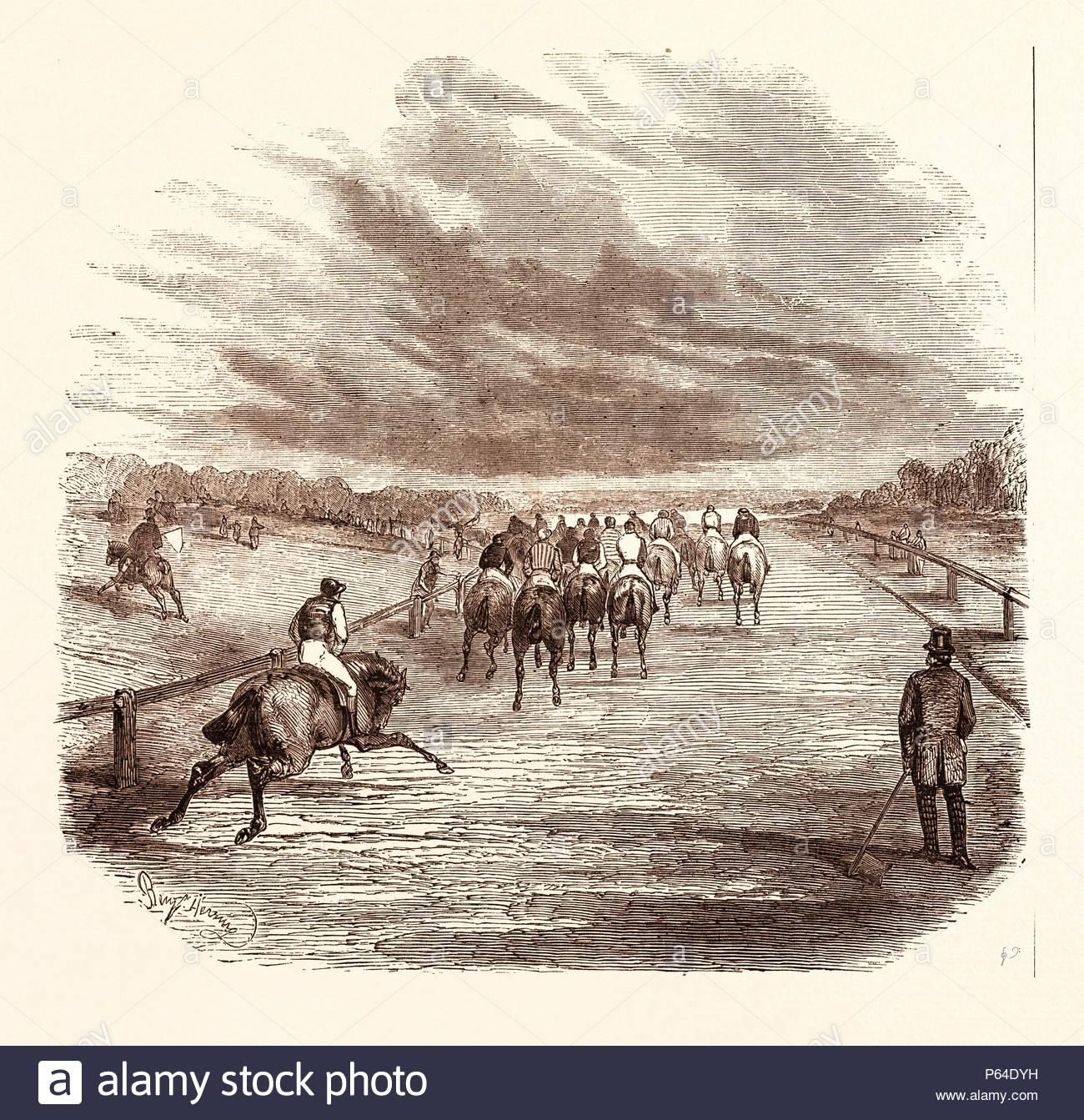 Racing Horse Jockey Race Thoroughbred Derby Equestrian Racehorse Hippodrome Run Gallop Riding Track