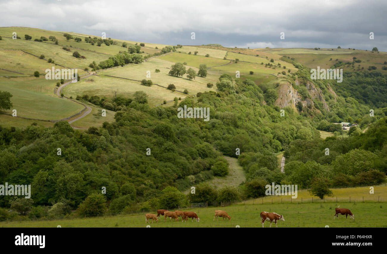 Manifold Valley, seen from near Grindon, Peak District. Stock Photo