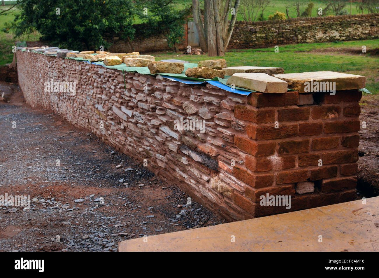 A half finished traditional morte slate wall waiting for coping stones at Halswell House near Bridgewater, Somerset, UK - Stock Image