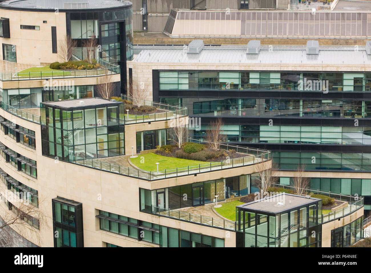An architect designed modern building with a grass roof just off Princes Street in Edinburgh Scotland UK. Incorporating a green roof on buildings can  - Stock Image