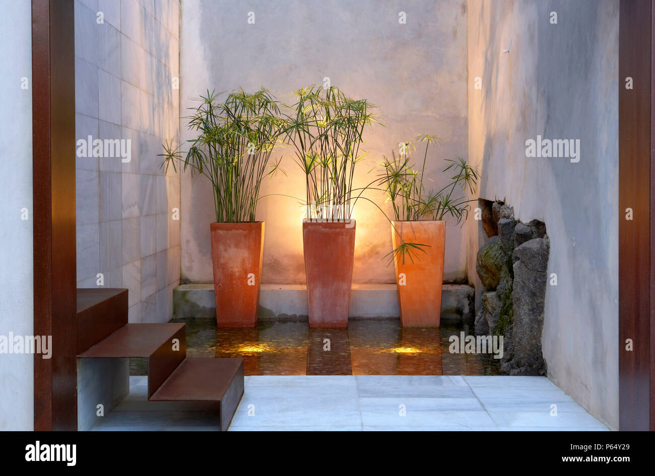 Tiled marble wall with houseplant and door steps - Stock Image