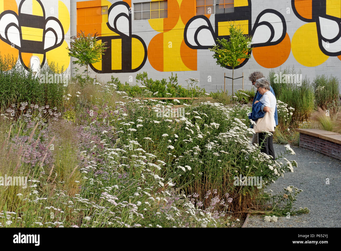 Man and woman in Fifth and Pine pop-up park and pollinator project  bee habitat, Vancouver, BC, Canada - Stock Image