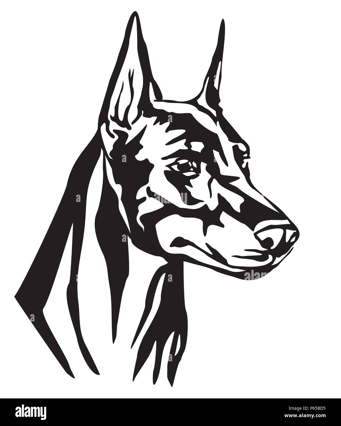 Decorative portrait of Dog Dobermann, vector isolated illustration in black color on white background. Image for design and tattoo. - Stock Image