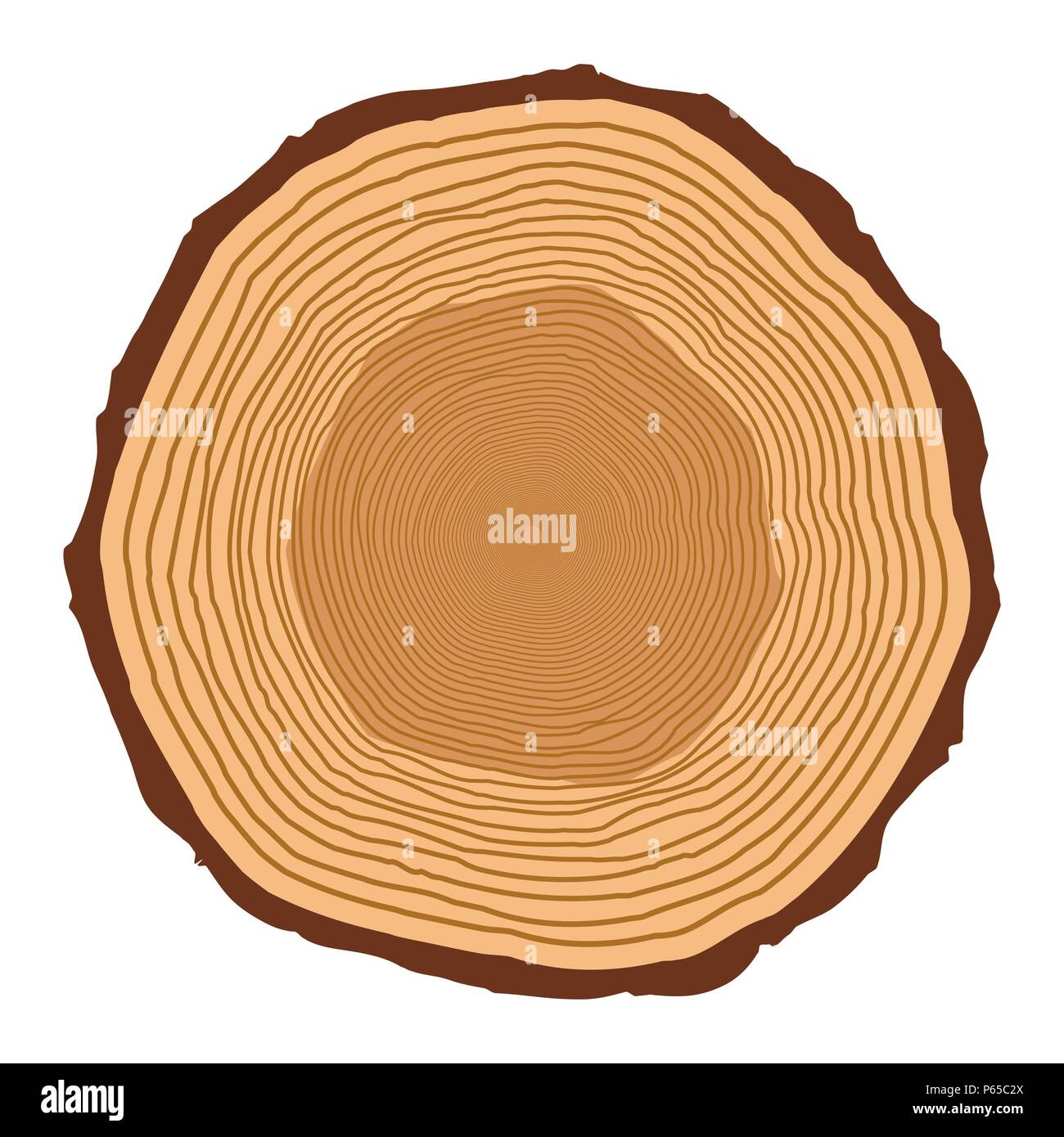 tree trunk rings design isolated on white background - Stock Image
