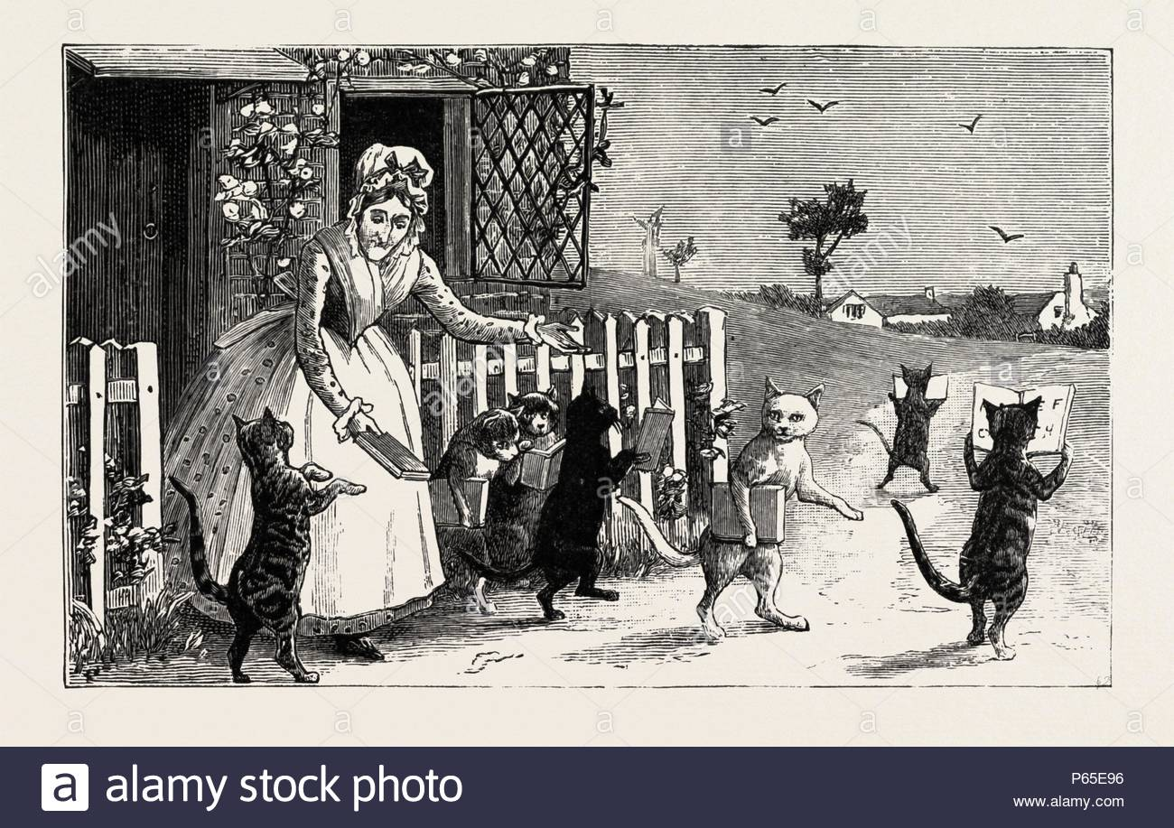 READING CATS, engraving 1890, engraved image, history, arkheia, illustrative technique, engravement, engraving, victorian, Arts, Culture, 19th Century Style, Retro Styled, Vintage, retro, nineteenth century engraving, historic art. - Stock Image
