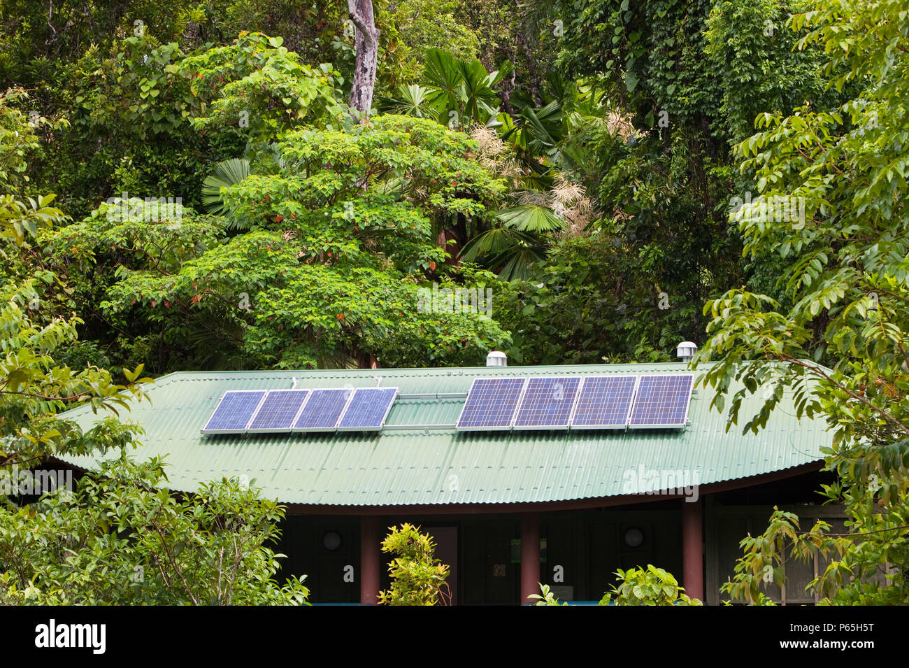 A toilet block with solar panels on the roof in the Daintree rainforest in the North of Queensland, Australia, which is the oldest continuously forest - Stock Image