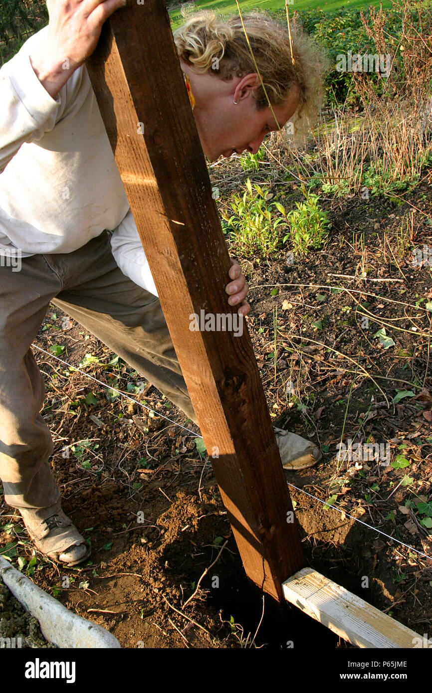 Man Building Fence - Stock Image