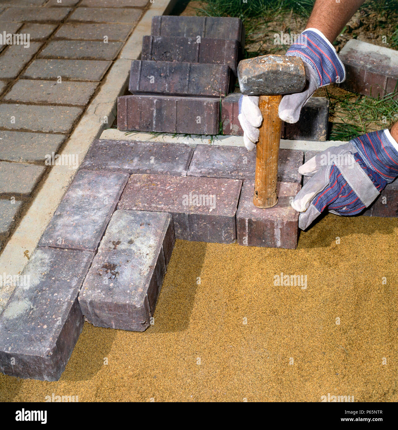 Laying Paving Stones In A Front Garden Stock Photo Alamy