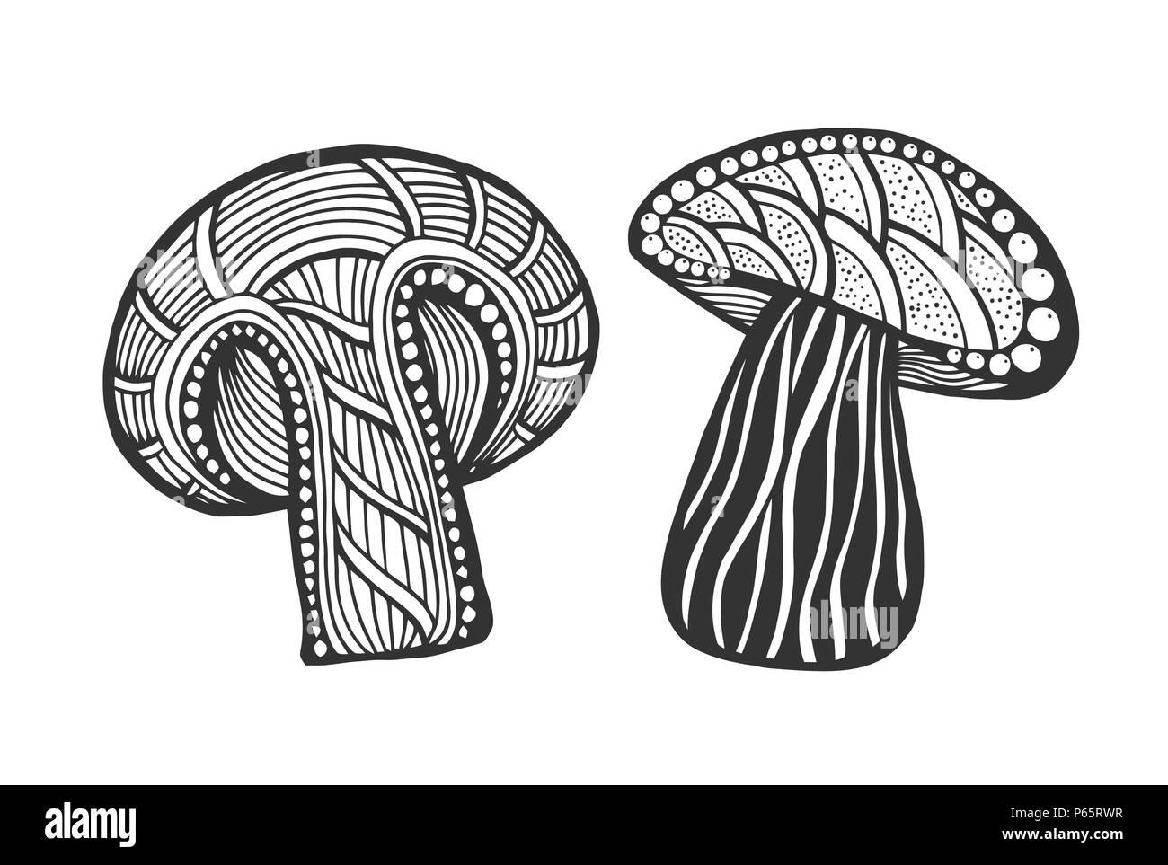 Magic Mushroom Black And White Stock Photos Images Alamy
