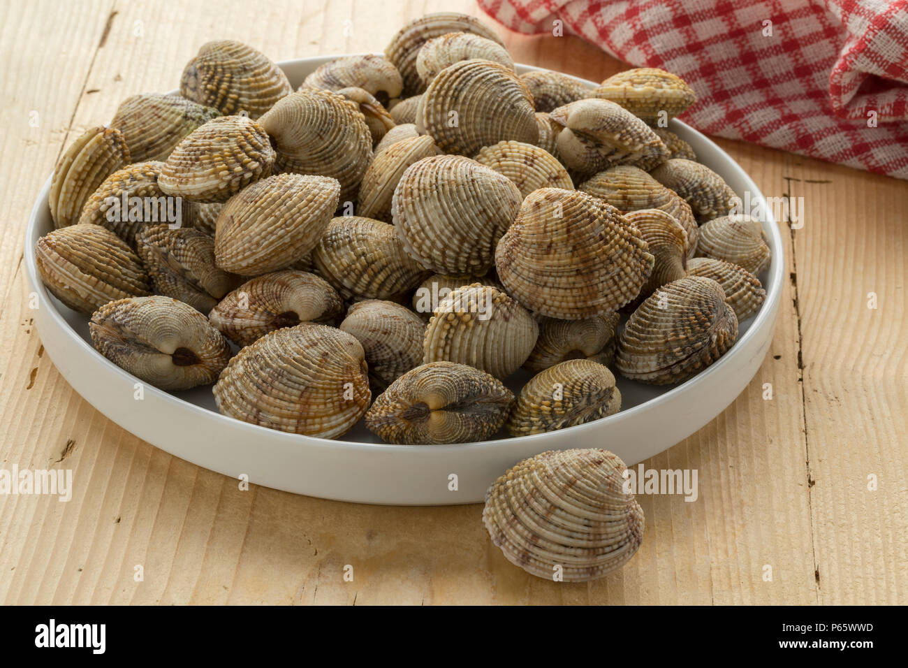 Dish with fresh raw closed warty venus clams for a meal - Stock Image