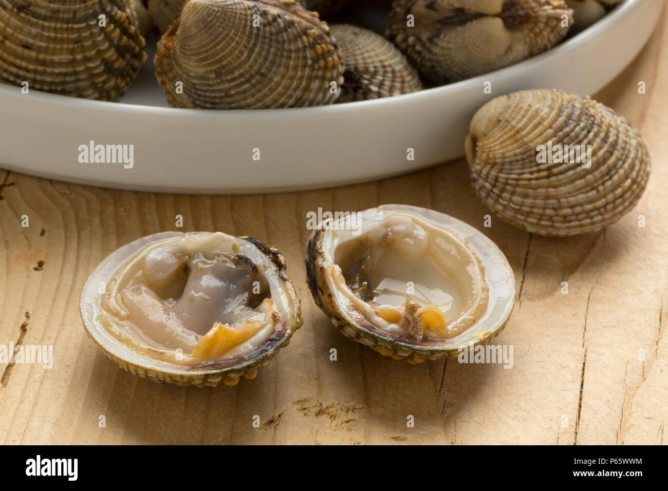 Dish with fresh raw warty venus clams for a meal, one open in front - Stock Image
