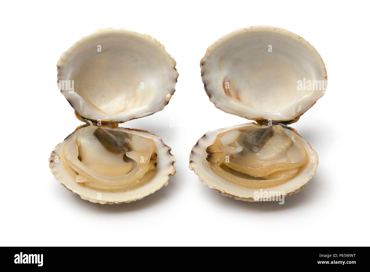how to open raw clams easily