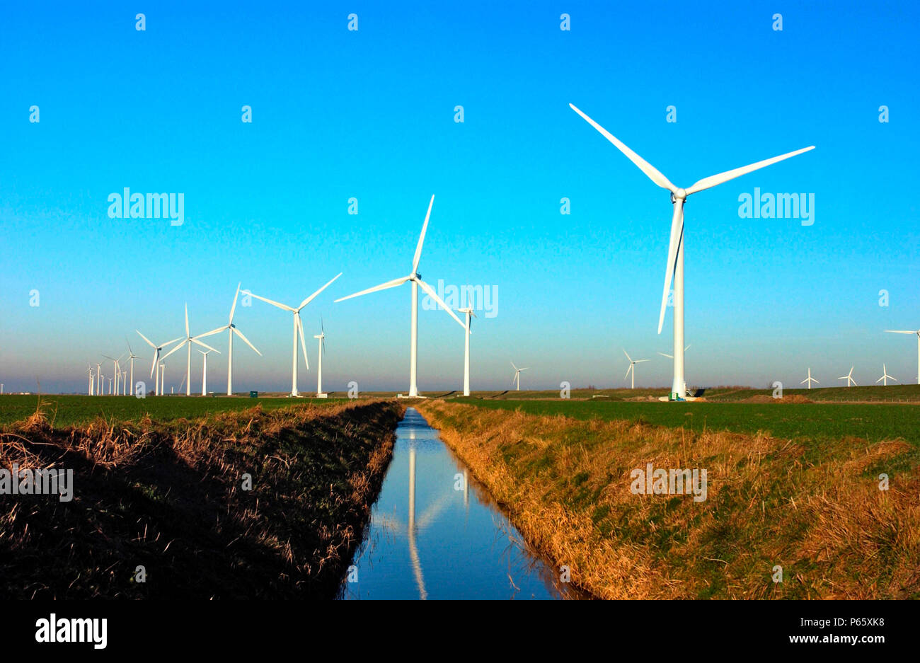 Soenke Stock Photos & Soenke Stock Images - Alamy
